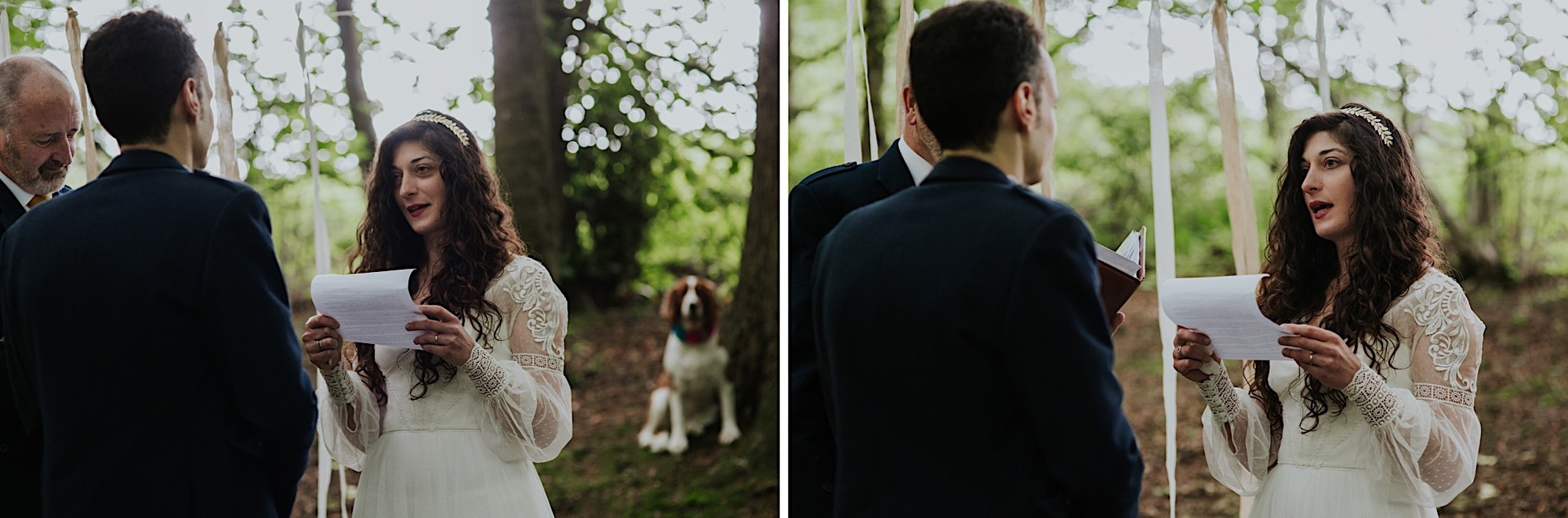 dog watching over the wedding ceremony